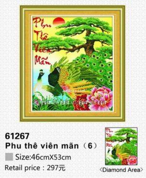 61267-tranh-gan-da-chim-cong-anh-nguon-kadoza