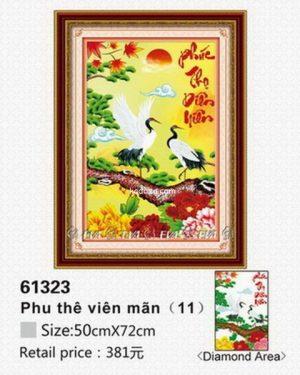 61323-tranh-gan-dapchim-hac